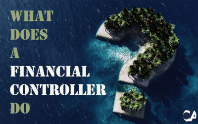 What Does A Financial Controller Do?