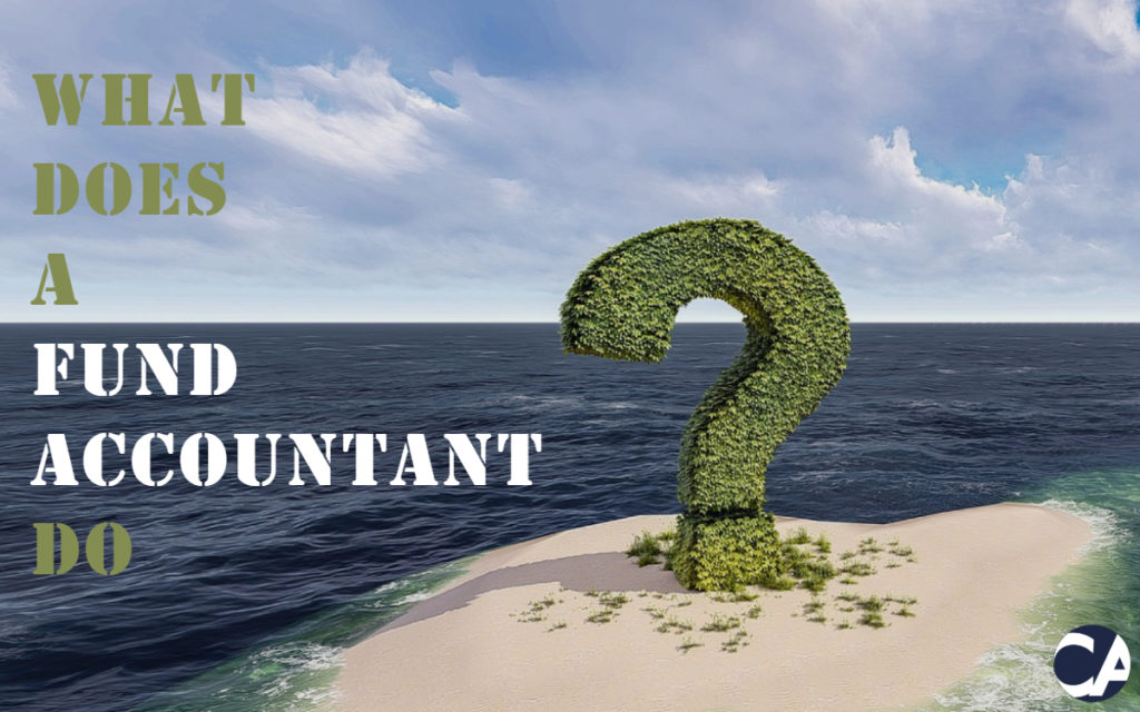 What Does A Fund Accountant Do?