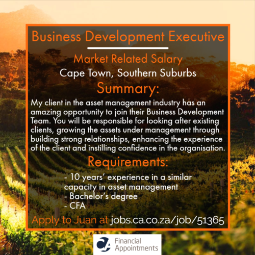 Business Development Executive Job 51365 - Cape Town, Southern Suburbs - CA Financial Appointments